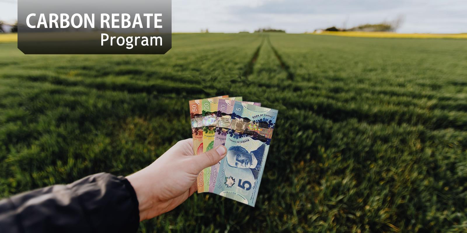 Carbon Credit/Rebate